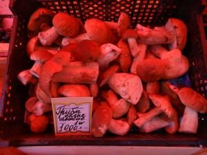 Подмосковные грибы.