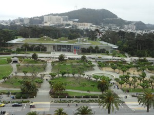 Прогулка по Golden Gate Park на Segway.